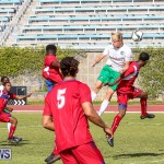 Bermuda Select vs New York Cosmos Football, March 19 2017-141
