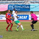 Bermuda Select vs New York Cosmos Football, March 19 2017-27