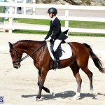 CEA Dressage Competition Bermuda Feb 26 2017 (13)