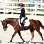 CEA Dressage Competition Bermuda Feb 26 2017 (14)