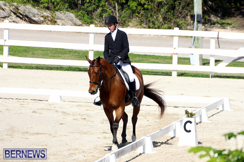 CEA-Dressage-Competition-Bermuda-Feb-26-2017-15