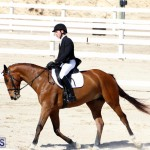 CEA Dressage Competition Bermuda Feb 26 2017 (18)