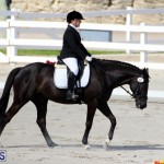 CEA Dressage Competition Bermuda Feb 26 2017 (5)