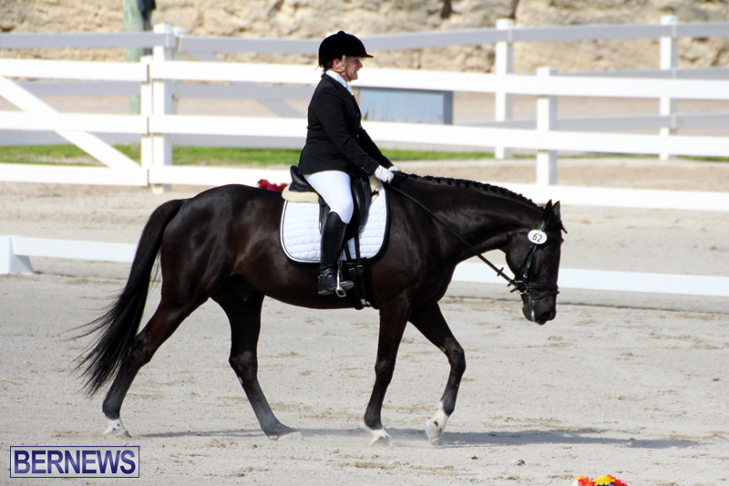 CEA-Dressage-Competition-Bermuda-Feb-26-2017-5