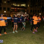 Earth Hour Bermuda, March 25 2017-38