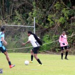 FA Challenge Cup Quarter Finals Bermuda March 12 2017 (15)