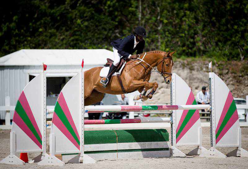 FEI WJC Round 2 Dale Rochester on Carolina Gold Bermuda March 4 2017