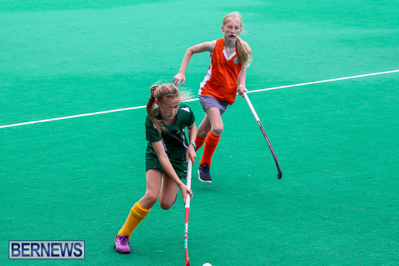 Hockey-Bermuda-March-19-2017-25