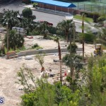 Horseshoe Bay Beach work Bermuda march 16 2017 (15)