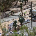 Horseshoe Bay Beach work Bermuda march 16 2017 (2)