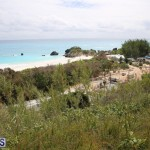 Horseshoe Bay Beach work Bermuda march 16 2017 (6)