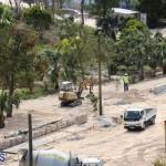 Horseshoe Bay Beach work Bermuda march 16 2017 (9)
