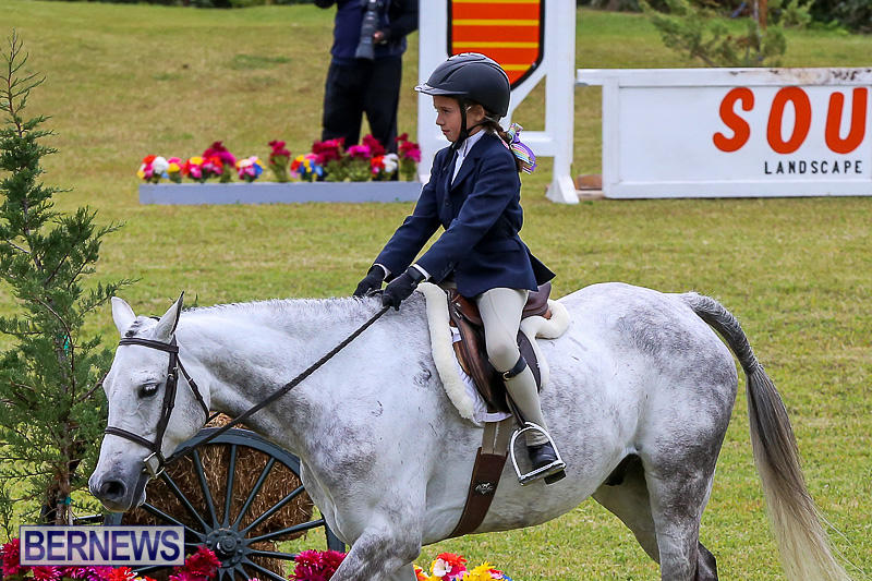 RES-Spring-Horse-Show-Series-Bermuda-March-11-2017-1