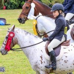 RES Spring Horse Show Series Bermuda, March 11 2017-11