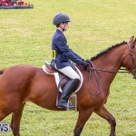 RES Spring Horse Show Series Bermuda, March 11 2017-13