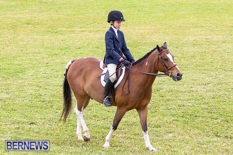 RES-Spring-Horse-Show-Series-Bermuda-March-11-2017-14