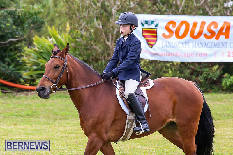 RES-Spring-Horse-Show-Series-Bermuda-March-11-2017-16