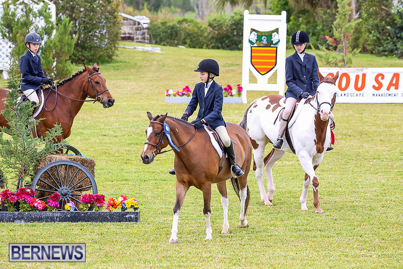 RES-Spring-Horse-Show-Series-Bermuda-March-11-2017-17