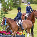 RES Spring Horse Show Series Bermuda, March 11 2017-18