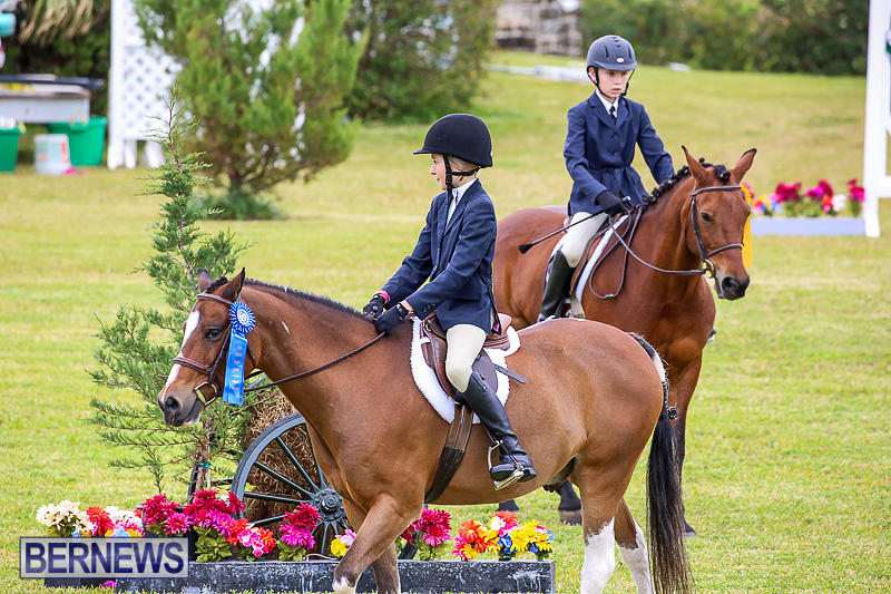 RES-Spring-Horse-Show-Series-Bermuda-March-11-2017-18