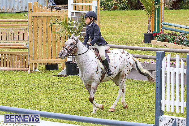 RES-Spring-Horse-Show-Series-Bermuda-March-11-2017-23