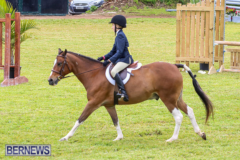 RES-Spring-Horse-Show-Series-Bermuda-March-11-2017-24