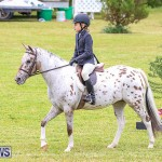 RES Spring Horse Show Series Bermuda, March 11 2017-25