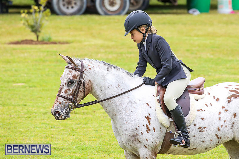 RES-Spring-Horse-Show-Series-Bermuda-March-11-2017-26