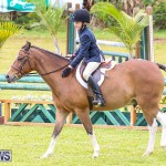 RES Spring Horse Show Series Bermuda, March 11 2017-27
