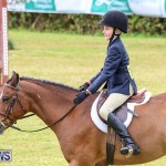 RES Spring Horse Show Series Bermuda, March 11 2017-28