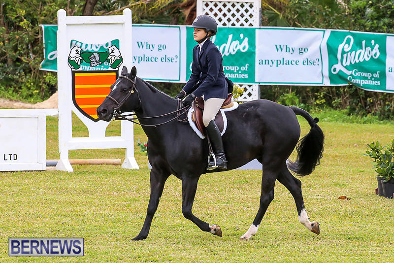 RES-Spring-Horse-Show-Series-Bermuda-March-11-2017-35