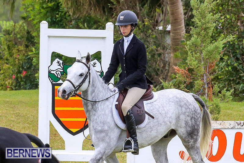 RES-Spring-Horse-Show-Series-Bermuda-March-11-2017-37