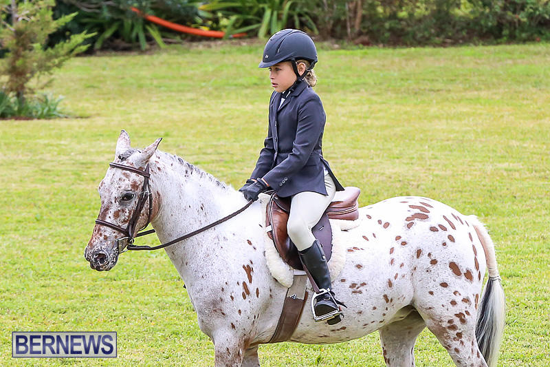 RES-Spring-Horse-Show-Series-Bermuda-March-11-2017-4