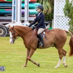 RES Spring Horse Show Series Bermuda, March 11 2017-40