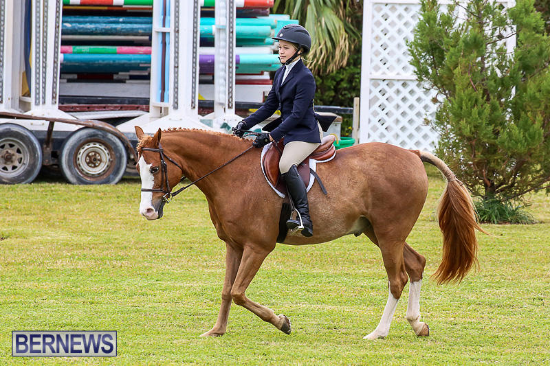 RES-Spring-Horse-Show-Series-Bermuda-March-11-2017-40