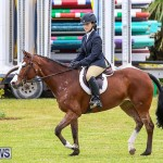 RES Spring Horse Show Series Bermuda, March 11 2017-42
