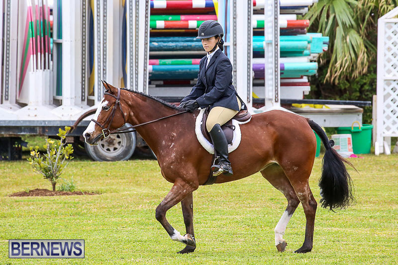 RES-Spring-Horse-Show-Series-Bermuda-March-11-2017-42