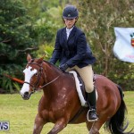 RES Spring Horse Show Series Bermuda, March 11 2017-43