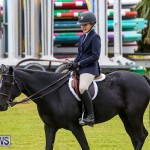 RES Spring Horse Show Series Bermuda, March 11 2017-44