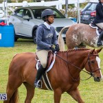 RES Spring Horse Show Series Bermuda, March 11 2017-45