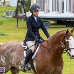 RES Spring Horse Show Series Bermuda, March 11 2017-46