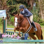 RES Spring Horse Show Series Bermuda, March 11 2017-48