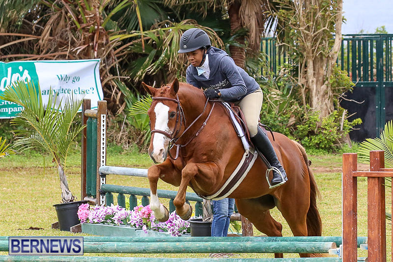 RES-Spring-Horse-Show-Series-Bermuda-March-11-2017-48