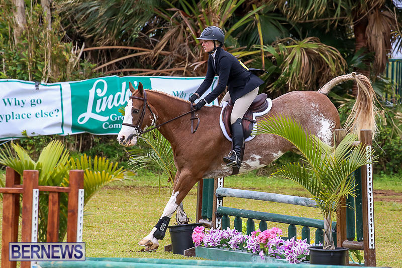 RES-Spring-Horse-Show-Series-Bermuda-March-11-2017-50