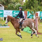 RES Spring Horse Show Series Bermuda, March 11 2017-51