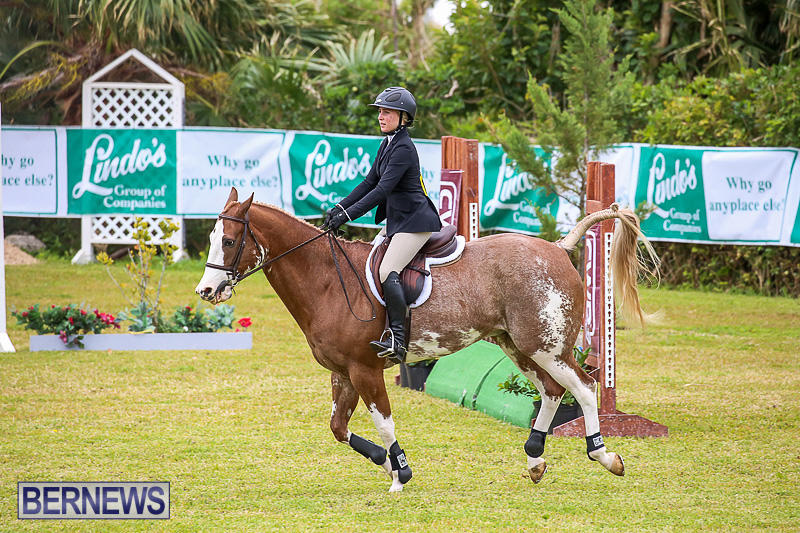 RES-Spring-Horse-Show-Series-Bermuda-March-11-2017-51
