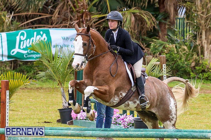 RES-Spring-Horse-Show-Series-Bermuda-March-11-2017-53