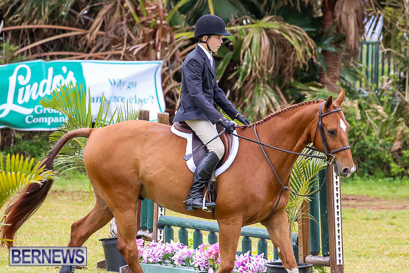 RES-Spring-Horse-Show-Series-Bermuda-March-11-2017-59