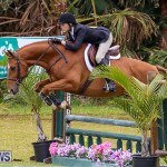 RES Spring Horse Show Series Bermuda, March 11 2017-61