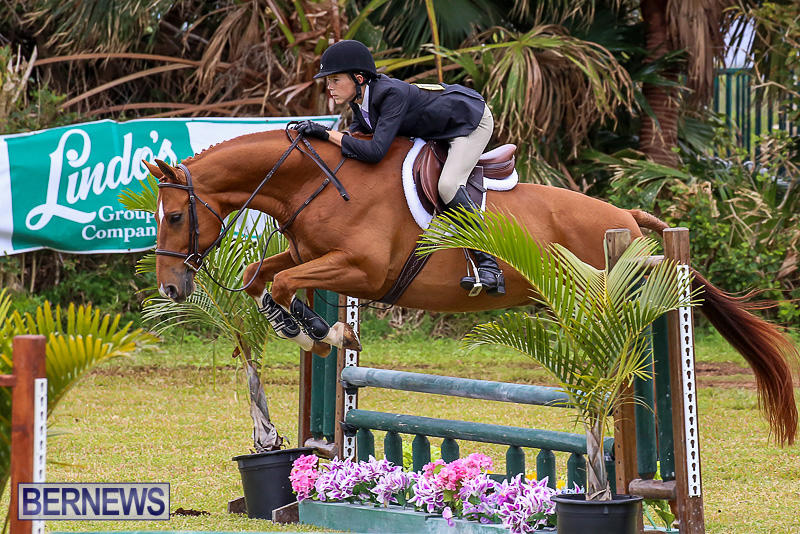 RES-Spring-Horse-Show-Series-Bermuda-March-11-2017-61